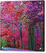 Bountiful Color Acrylic Print