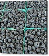 Bounty Of Blueberries Acrylic Print