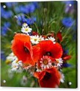 Bouquet Of Fresh Poppies Camomiles And Cornflowers Acrylic Print