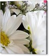 Bouquet Of Daisies Acrylic Print