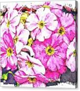 Bouquet Of Pink Acrylic Print