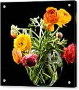 Bouquet Of Ranunculus Acrylic Print