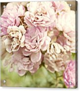 Bouquet Of Vintage Roses Acrylic Print