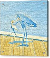 Bowing Heron In Light Blue And Yellow Acrylic Print