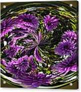 Bowl Of Dahlias Acrylic Print