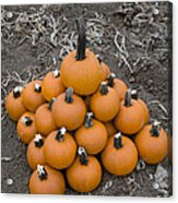 Bowling For Pumpkins Acrylic Print