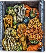 Box Of Gourds Acrylic Print