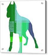Boxer 1 Acrylic Print by Naxart Studio