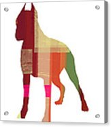 Boxer 2 Acrylic Print by Naxart Studio
