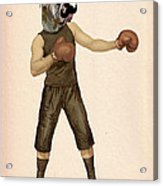 Boxing Bulldog Acrylic Print