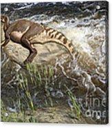 Brachylophosaurus canadensis corpse Acrylic Print