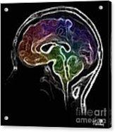 Brain And Mind Acrylic Print