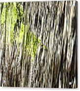 Branch In Waterfall Acrylic Print
