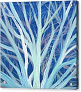 Branches By Jrr Acrylic Print