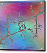 Branches In The Mist 60 Acrylic Print