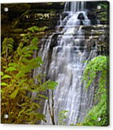 Brandywine Falls Of Cuyahoga Valley National Park Waterfall Water Fall Acrylic Print