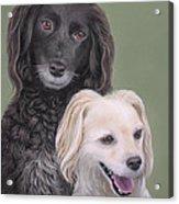 Brea And Randy Acrylic Print