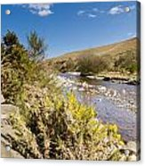Breamish Valley In Spring Acrylic Print