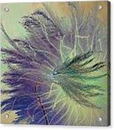 Breath In Wings  Acrylic Print