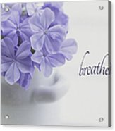 Breathe Acrylic Print