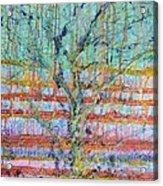 Breathe - Tree Of Life 4 Acrylic Print