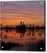 Breathtaking Florida Acrylic Print