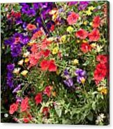Breckenridge Bouquet Acrylic Print