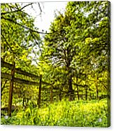 Breezy Spring Afternoon Acrylic Print