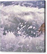 Brian Swimming In The Sea Acrylic Print