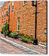 Brick Alley Acrylic Print by Baywest Imaging