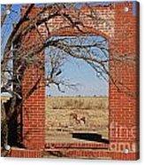 Brick Entry 1 Acrylic Print