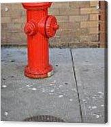 Bricks And Fire Acrylic Print