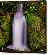 Bridal Dress. Waterfall At Benmore Botanical Garden. Nature Of Scotland Acrylic Print