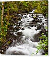 Bridal Veil Creek Acrylic Print