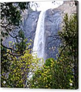 Bridal Veil Falls In Yosemite Valley In Spring- 2013 Acrylic Print