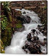 Lower Wahkeena Falls Acrylic Print