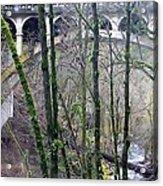 Bridge Arch Through The Trees Acrylic Print