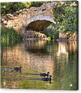 Bridge At Stow Lake Acrylic Print