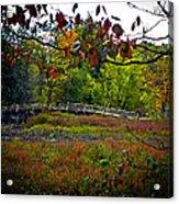 Bridge In Massachusetts Park Acrylic Print