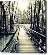 Bridge In The Wood Acrylic Print