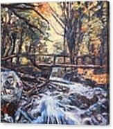 Morning Bridge In Woods Acrylic Print