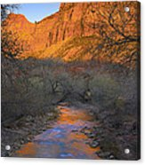 Bridge Mt And The Virgin River Zion Np Acrylic Print