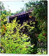 Bridge Over Ausable Chasm Acrylic Print