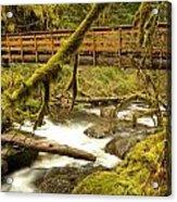 Bridge Over Paradise Acrylic Print