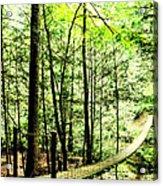 Bridge To Beauty Acrylic Print