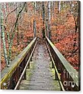 Bridge To Fall Acrylic Print