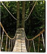 Bridge To The Forest Acrylic Print