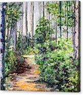 Bridle Path Acrylic Print