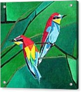 Brighly Colored European Bee-eaters Acrylic Print