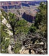 Bright Angel Point View Acrylic Print